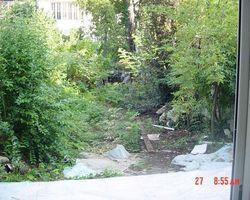 Parcs & Jardins du Médoc - Saint-Laurent-Médoc - NETTOYAGE DE PARCS ET JARDINS (BORDEAUX)
