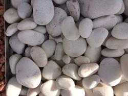 Marbre blanc adouci 40.80
